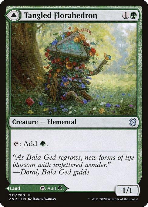 Tangled Florahedron